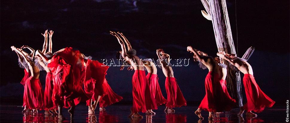 В Улан-Удэ стартовал проект «Открытая сцена — танцы здоровья»